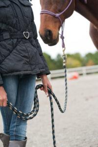 girl holding horse reins